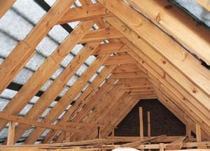 Крыши для дома
