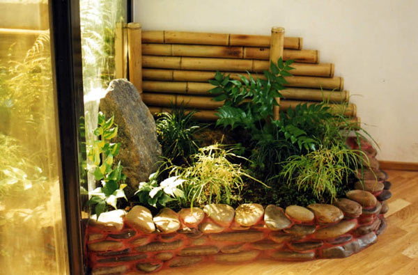 Зимний сад своими руками в доме или квартире